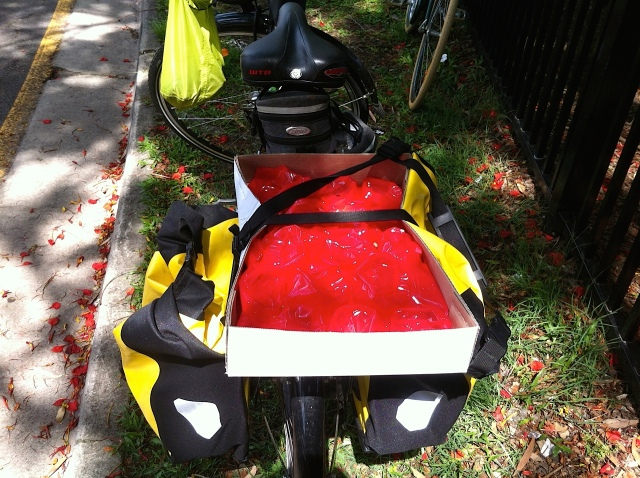 ... is emptied and fruit placed delicately in the panniers with bags for cushioning.