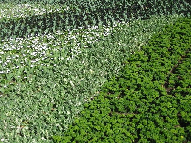 Floriade green.