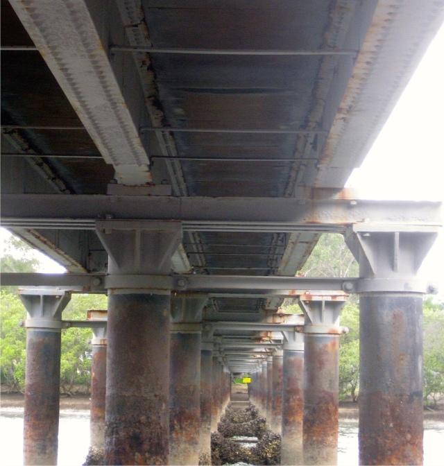 20160311 under bridge IMG_1571