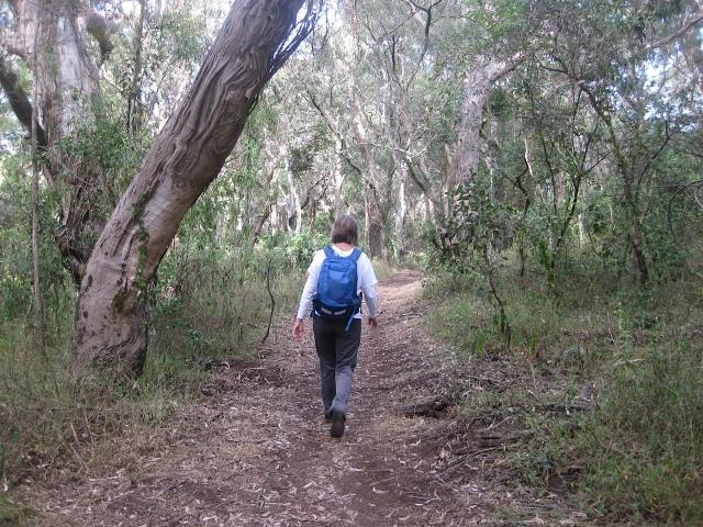 20160423 hiking IMG_1987