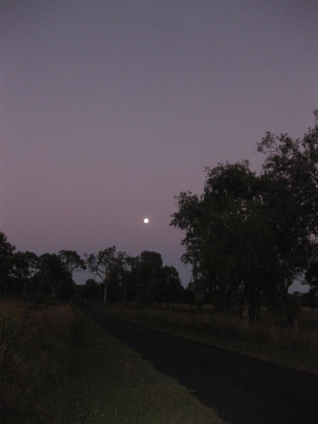 20170311 IMG_3609 moonlight