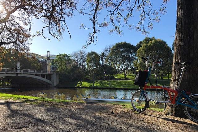 20170927_13 Adelaide IMG_3217
